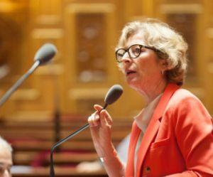 La ministre Geneviève Fioraso victime de sexisme à l'Assemblée ?