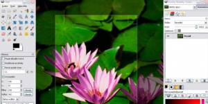 5 bons logiciels de retouche photos gratuits