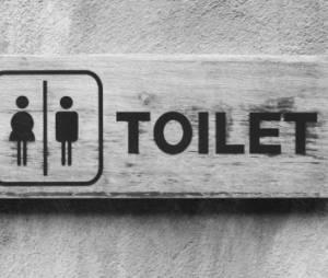 World Toilet Day : cinq choses utiles ou insolites à savoir sur les toilettes