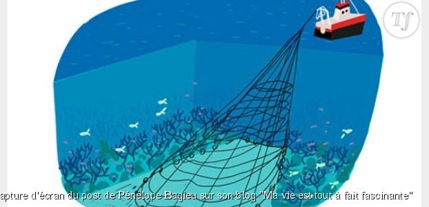 Pénélope Bagieu : sa BD géniale en faveur d'une pétition contre la destruction des océans