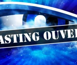 Secret Story 2014 : comment s'inscrire au casting pour être candidat sur TF1 ?