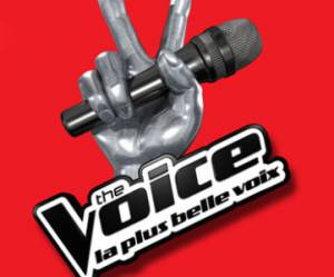The Voice 2014: combien l'émission rapporte-t-elle à TF1?