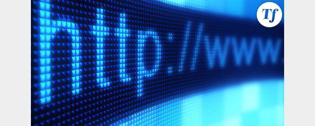 """Le groupe de hackers """"Lulzsec"""" a piraté le site Internet de la CIA"""