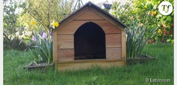 Le bon coin une annonce tr s amusante pour une niche - Le bon coin 43 jardinage ...