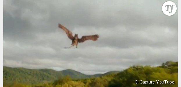Harry Potter : date de sortie du nouveau film sur les animaux fantastiques