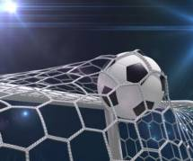 Coupe du monde 2014 : Steve Mandanda officiellement forfait