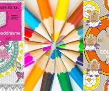 Coloriages pour adultes : le gros succès surprise des libraires vous fera-t-il zénifier ?