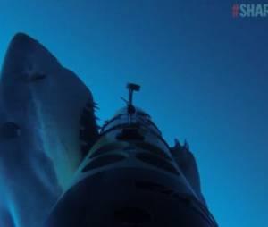 L'attaque de ce requin blanc va vous faire faire des cauchemars - vidéo
