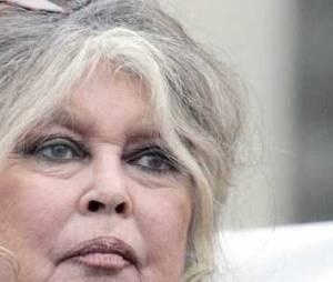 Brigitte Bardot, son mari Bernard d'Ormale et le FN