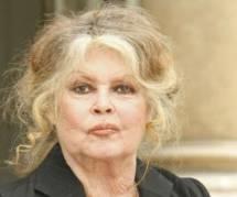 """Brigitte Bardot aux jihadistes : """"j'en prendrais un et je lui ferais la peau"""""""