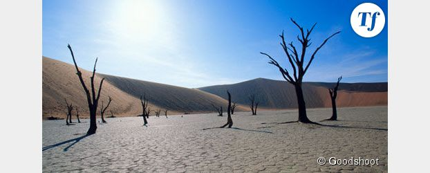 Le changement climatique affecterait notre santé mentale