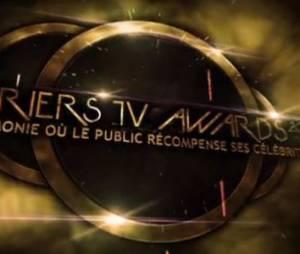 Lauriers TV Awards 2015 : cérémonie en direct streaming et gagnants (+ replay)