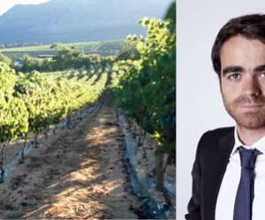 Clément Marcorelles, fondateur de Wine Services