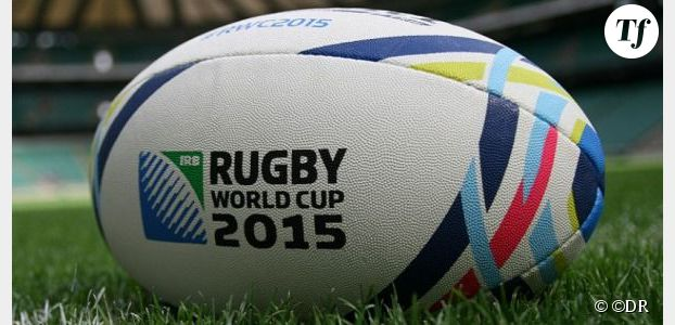 Mondial rugby 2015 : TF1 cède des matchs à Canal +