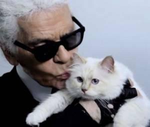 Karl Lagerfeld totalement fou d'amour pour sa Choupette
