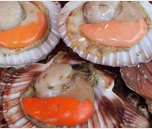 Les noix de st jacques aux artichauts de Masterchef