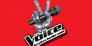 The Voice 2015 : les candidats sélectionnés pour la tournée
