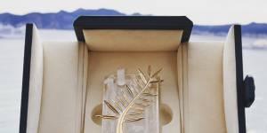 Palmarès Cannes 2015 : cérémonie de clôture et palme d'or en streaming / replay