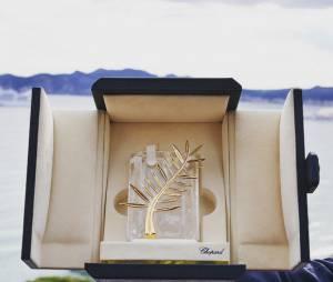 La Palme d'or 2015 du 68ème Festival de Cannes