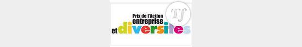 Le Prix de l'Action Entreprise et Diversités récompense 7 grands groupes