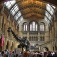 Le squelette de Dippy au London Natural History Museum.