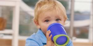 Alerte sanitaire : le bisphénol A toxique même à faible dose