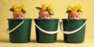 Avant-après : que sont devenus les bébés des célèbres posters d'Anne Geddes ?