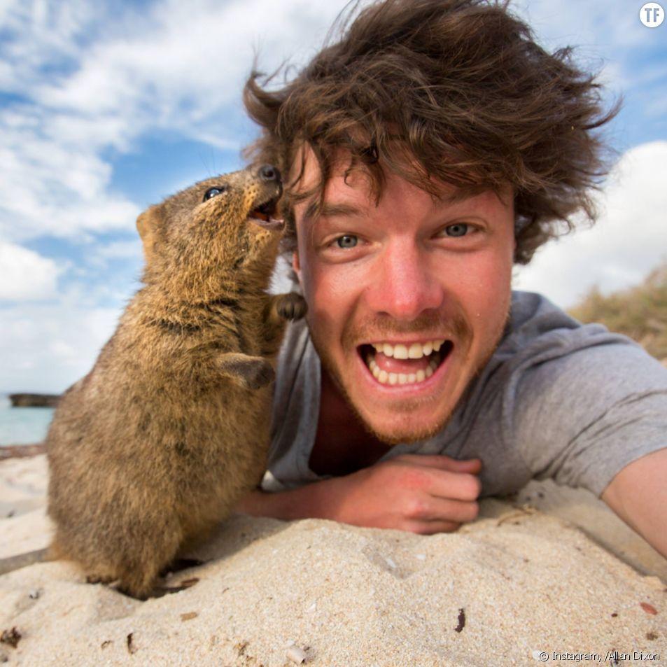 Allan Dixon, le professionnel des selfies avec les animaux sauvages