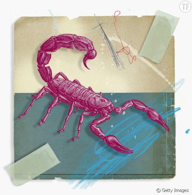 Quels signes pour les Scorpions ?