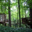Une jolie cabane dans les arbres à Atlanta