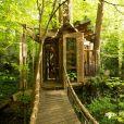 Cette petite cabane dans les bois est féerique