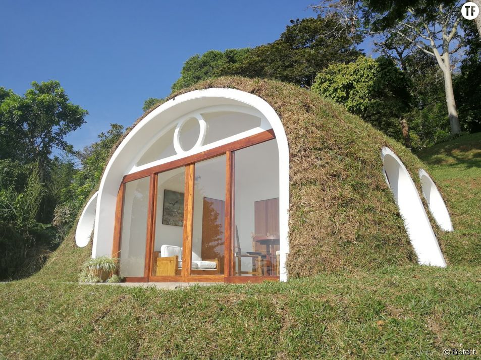 Écolo et pas chère, cette maison de hobbit a tout pour plaire