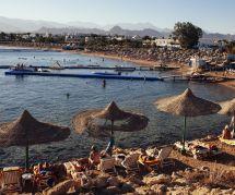 Les Saoudiennes pourront bientôt porter le bikini sur une plage... privée