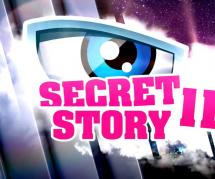 Secret Story 11 : un célèbre youtubeur candidat dans l'émission ?