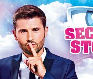 Secret Story saison 11