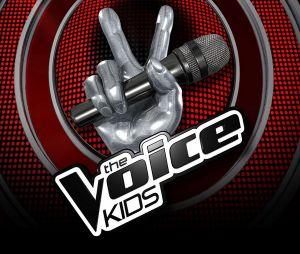 The Voice Kids 2017 : les dernières auditions à l'aveugle sur TF1 Replay (9 septembre)