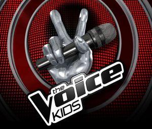 The Voice Kids 2017 : les Battles sur TF1 Replay (15 septembre)