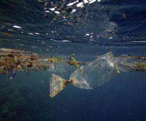 Devenez citoyen des îles Poubelles pour sauver les océans des déchets plastiques