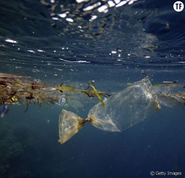 Devenez citoyen des îles Poubelle pour sauver les océans des déchets plastique
