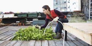 3 astuces pour être écolo quand on habite dans une grande ville