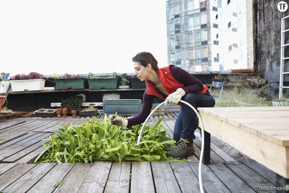 3 trucs pour chérir la faune et la flore... même quand on habite en ville