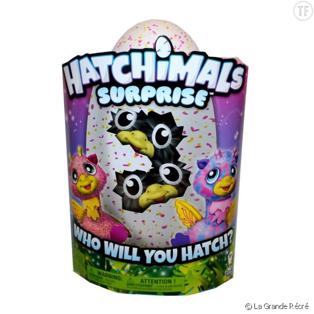 Hatchimals surprises