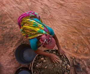 Environnement : la COP 23 devrait adopter un plan d'action pour l'égalité des sexes