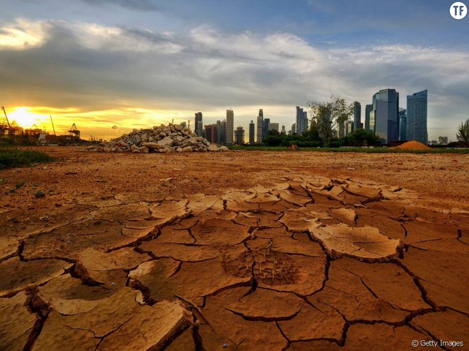 Le One Planet Summit se tient ce mardi 12 décembre, deux ans après la COP21