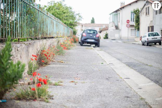 Ville sans pesticides