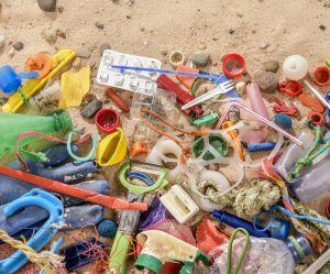 Le plastique laisse des traces partout... y compris dans nos excréments