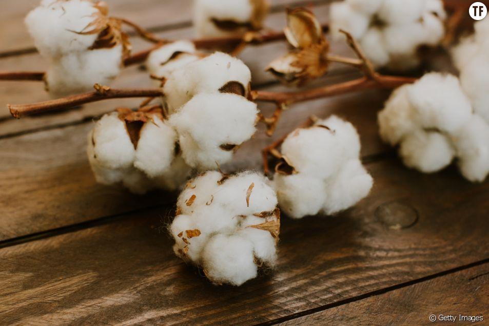 Zéro déchet : par quoi je remplace le coton ?
