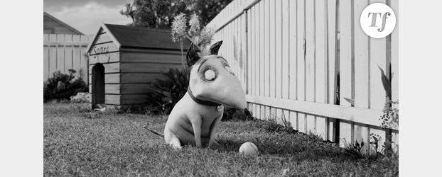 Tim Burton revient avec Frankenweenie – Vidéo streaming