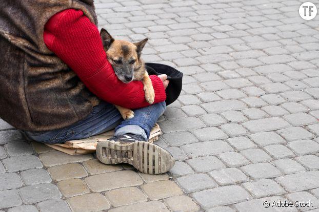On estime à 250 000 le nombre de sans-abri en France.