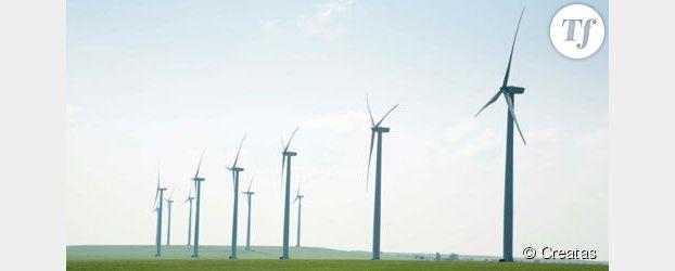 Energie : les éoliennes françaises battent des records